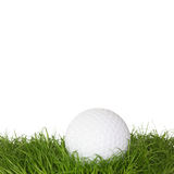 A golf ball in the grass Royalty Free Stock Photos