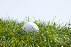 Golf ball in grass. Close-up of white golf ball in long grass Royalty Free Stock Photos