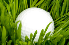 Golf ball and grass Royalty Free Stock Images