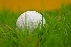 Golf ball and grass. Golf ball and grass background Royalty Free Stock Photos