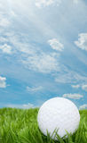 Golf Ball. In Grass - Blue Summer Sky in Background stock image