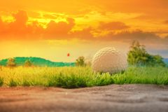 Golf ball on grass close sand bunker in the evening and light sunset. Golf ball on grass close sand bunker in the evening and light sunset Royalty Free Stock Photo