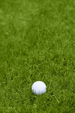 Golf ball on grass course Stock Images