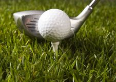 Golf ball on grass with driver Stock Photos