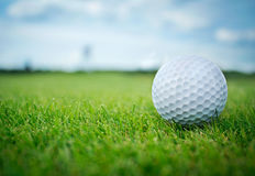 Golf ball in grass Royalty Free Stock Photography