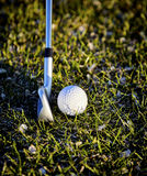 Golf Ball on Grass with Golf Club Royalty Free Stock Photo