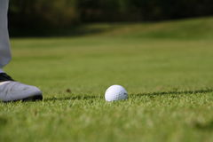 Golf ball on grass and golfer's foot. Golf ball and foot of player on the grass Royalty Free Stock Photo