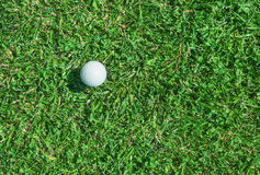 Golf ball on the grass Royalty Free Stock Photos