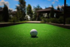 Golf ball on the grass Stock Photography