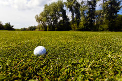 golf ball in the grass royalty free stock image