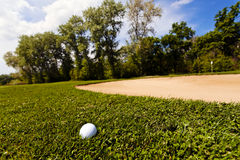 Golf ball in the grass Stock Image
