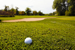 Golf ball in the grass Stock Images