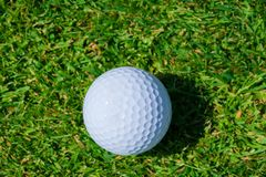 Golf ball grass. Golf single ball grass one course activity close-up equipment turf stock photos