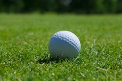 Golf ball grass. Golf single ball grass one course activity close-up equipment turf royalty free stock photo