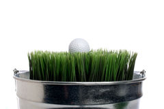 A golf ball on grass in a small container Royalty Free Stock Image