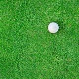 Golf Ball on the Grass for web background Royalty Free Stock Images