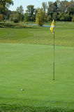 Golf Ball on Green. Golf ball on the green of course Royalty Free Stock Image