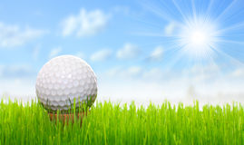 Golf ball on a green. Golf ball on tee over a green. Close up with shallow DOF royalty free stock photo