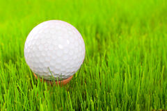 Golf ball on a green. stock photo