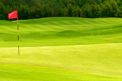 Golf ball on green. Near to hole with the red flag Royalty Free Stock Photography