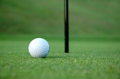 Golf ball on the green Royalty Free Stock Images