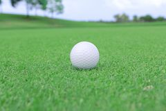 Golf ball on a green. Field Stock Image