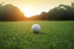 Golf ball on green in beautiful golf course with sunset. Golf ba. Ll close up in golf coures at Thailand royalty free stock photos