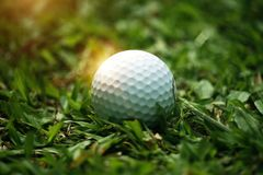 Golf ball on green in beautiful golf course with sunset. Golf ba. Ll close up in golf coures at Thailand stock photography
