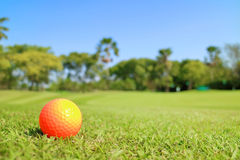Golf ball on green with beautiful nature scene. Royalty Free Stock Images