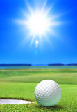Golf ball on green course. Near the bunker Royalty Free Stock Image