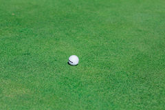 Golf ball on green course field. Golf ball on perfect wavy green ground on a golf course Royalty Free Stock Photos