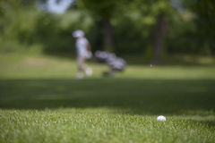 Golf ball on the green. Detail golf course Stock Image