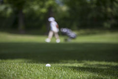 Golf ball on the green. Detail golf course Royalty Free Stock Photos