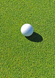 Golf ball on the green, golf course, Andalusia, Spain stock photos