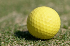 Golf Ball on the Green Grass. With green background Royalty Free Stock Photos