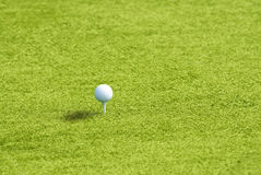 Golf ball on the green grass Stock Images