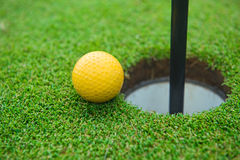 Golf ball on the green grass Stock Photography