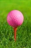 Golf ball on a green grass Stock Image