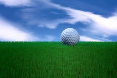 Golf ball in green grass Royalty Free Stock Photos