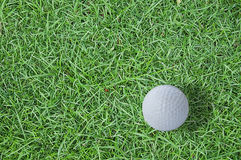 Golf ball on green grass. Golf ball drop on green grass Royalty Free Stock Photography