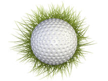 Golf ball with green grass Stock Images