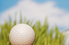 Golf ball and green grass. At thec background Royalty Free Stock Photos