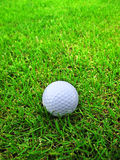 Golf ball on the grass Stock Photo