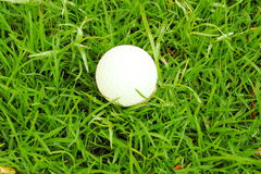 Golf Ball. On green grass Stock Images