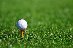 Golf ball. On green grass Royalty Free Stock Photography