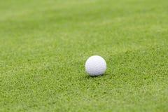 Golf ball on green Royalty Free Stock Photos