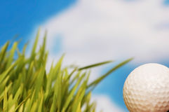 Golf ball and green grass agai Royalty Free Stock Photography