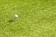 Golf ball on Green grass background Royalty Free Stock Photo