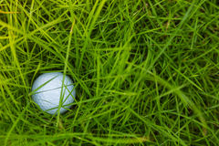Golf ball on green grass Royalty Free Stock Images