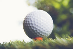 Golf ball. Royalty Free Stock Photo
